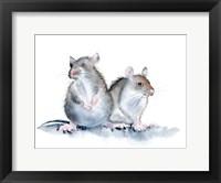 Framed Mice
