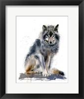 Framed Wolf IV