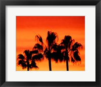 Framed Neon Palm Trees IV