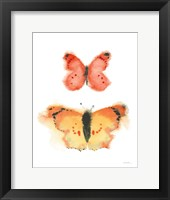 Framed Watercolor Butterflies IV