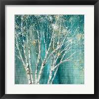 Framed Blue Birch Flipped