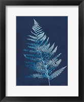 Framed Nature By The Lake - Ferns VI