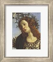 Framed Figure of Minerva (detail)