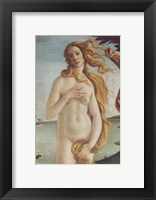 Framed Birth of Venus, Venus