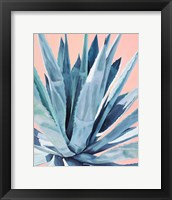 Framed Agave with Coral