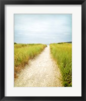 Framed Beach Trail