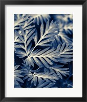 Framed Navy Blue Leaves
