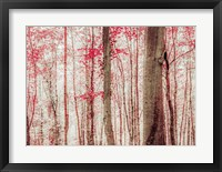 Framed Pink & Brown Fantasy Forest