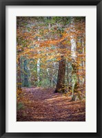 Framed Rust Fall Forest