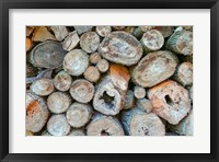 Framed Woodpile