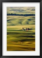 Framed Palouse #27