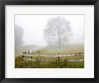 Framed Foggy Rural Scene
