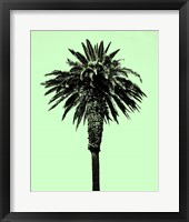 Framed Palm Tree 1996 (Green)