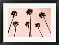 Framed Palm Trees 1997 Copper