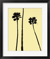 Framed Palm Trees 2000 (Yellow)