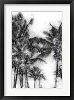 Framed Dorado Palms 1