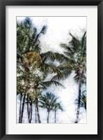 Framed Dorado Palms 2