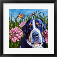 Framed Dog and Dragonflies