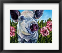 Framed Pigs and Peonies