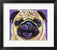 Framed Purple Pug
