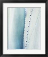Framed Pale Blue Agave No. 2