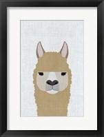 Framed Alpaca