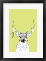 Framed Elk & Feathers