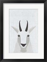 Framed Mountain Goat