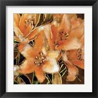 Framed Apricot Dream I
