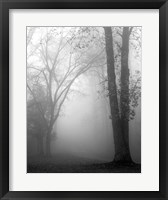 Framed November Fog
