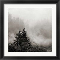 Framed Rising Mist, Smoky Mountains