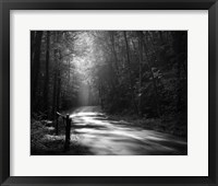 Framed Tremont Road, Smoky Mountains