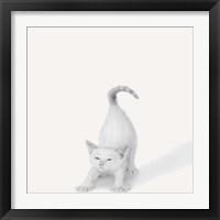 Framed Bonjour!
