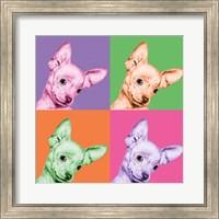 Framed Sweet Chihuahua Pop