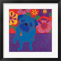 Framed Perspicacious Pug