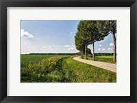 Framed Road Ahead