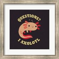 Framed Axolotl Questions