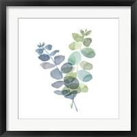Framed Natural Inspiration Blue Eucalyptus on White I
