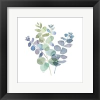 Framed Natural Inspiration Blue Eucalyptus on White II