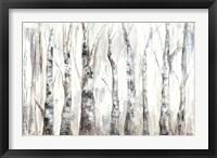 Framed Winter Aspen Trunks Neutral
