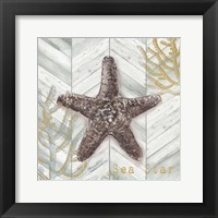 Framed Gray Gold Chevron Star Fish
