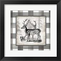 Framed Buffalo Check Deer Neutral II