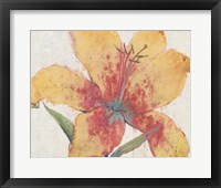 Framed Blooming Lily