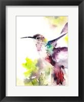 Framed Hummingbird