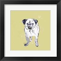 Framed Super Cute Pug