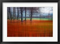 Framed Abstract Autumn