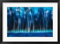Framed Mystic Forest