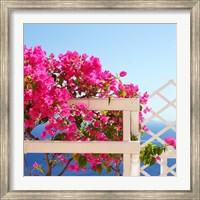 Framed Santorini Blooms