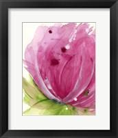 Framed Pink