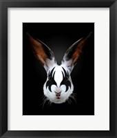 Framed Rabbit Rocks
